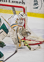 13 February 2015: University of Vermont Catamount Goaltender Madison Litchfield, a Sophomore from Williston, VT, in second period action against the University of New Hampshire Wildcats at Gutterson Fieldhouse in Burlington, Vermont. The Lady Catamounts fell to the visiting Wildcats 4-2 in the first game of their weekend Hockey East series. Mandatory Credit: Ed Wolfstein Photo *** RAW (NEF) Image File Available ***