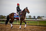 October 30, 2020: Dreamer'S Disease, trained by trainer Robertino Diodoro, exercises in preparation for the Breeders' Cup Juvenile at Keeneland Racetrack in Lexington, Kentucky on October 30, 2020. Alex Evers/Eclipse Sportswire/Breeders Cup