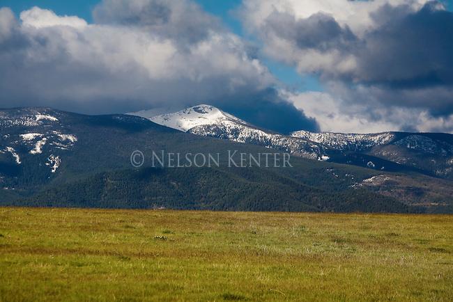 Lolo Peak still under snow in late May . Missoula, Montana