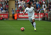 Pictured: Saturday 15 August 2015<br /> Re: Premier League, Swansea City v Newcastle United at the Liberty Stadium, Swansea, UK.