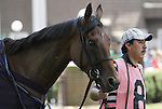 Honimiere, trained by Roger Attfield, walks in the paddock before the Grade III Robert G. Dick Memorial Stakes at Delaware Park, Stanton, DE, July 9, 2011. (Joan Fairman Kanes/Eclipsesportswire)