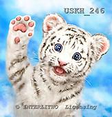 Kayomi, CUTE ANIMALS, LUSTIGE TIERE, ANIMALITOS DIVERTIDOS, paintings+++++HiFiveWhiteTiger,USKH246,#ac#,tiger cub ,everyday
