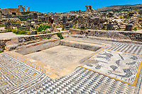 Volubilis, Morocco.  Mosaics in the House of Orpheus.  Sea Creatures on the Right.