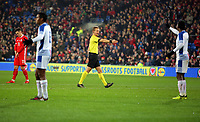 Referee Bart Vertenten points to the penalty spot during the international friendly soccer match between Wales and Panama at Cardiff City Stadium, Cardiff, Wales, UK. Tuesday 14 November 2017.