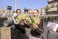 - Marsiglia, mercato rionale di piazza Castellane, ragazze zingare vendono fiori<br /> <br /> - Marseille, local market of Castellane square, gypsy girls selling flowers