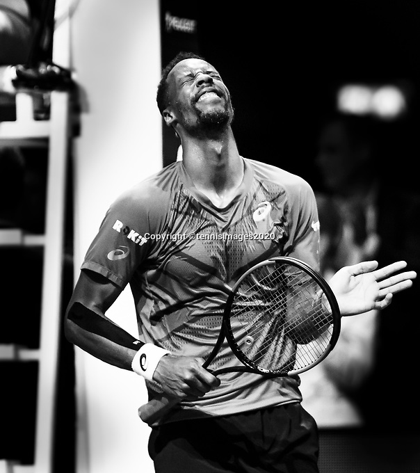 Rotterdam, The Netherlands, 16 Februari 2020, ABNAMRO World Tennis Tournament, Ahoy,<br /> Mens Single Final: Gaël Monfils (FRA) celebrates his win. <br /> Photo: www.tennisimages.com