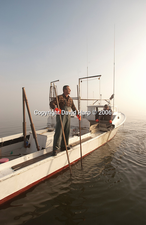 Tonging for oysters in the Choptank River, off Cambridge,MD