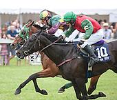 Radnor Hunt Races - 05/17/2013 - Complete Archive