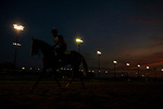 LOUISVILLE, KY - MAY 02: Horses train in the morning light at Churchill Downs on May 2, 2018 in Louisville, Kentucky. (Photo by Alex Evers/Eclipse Sportswire/Getty Images)