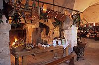 Europe/France/Centre/45/Loiret/Sologne/La Ferté-Saint-Aubin : Le château en briques et chaînages de pierre (XVII° siècle) - La cuisine