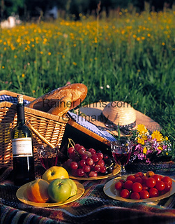 Picknick in einer Blumenwiese | picnic in a flower meadow