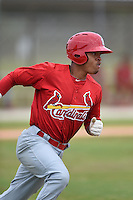 St. Louis Cardinals shortstop Edmundo Sosa (12) during a minor league spring training intrasquad game on March 28, 2014 at the Roger Dean Stadium Complex in Jupiter, Florida.  (Mike Janes/Four Seam Images)