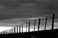 Fence in Wallowa County, Oregon at sunset.