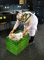 Nederland - Amsterdam - Oktober 2020.    Voedselbank. Uitgiftepunt Noord Banne Buikslootlaan. De voedselbank verzorgt pakketen voor mensen met een minimuminkomen. Op de foto een medewerkster aan het werk.  Foto mag niet in negatieve / schadelijke context gepubliceerd worden.   Foto : ANP/ HH / Berlinda van Dam