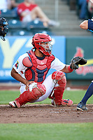 Springfield Cardinals catcher Gabriel Lino (5) during a game against the Corpus Christi Hooks on May 30, 2017 at Hammons Field in Springfield, Missouri.  Springfield defeated Corpus Christi 4-3.  (Mike Janes/Four Seam Images)