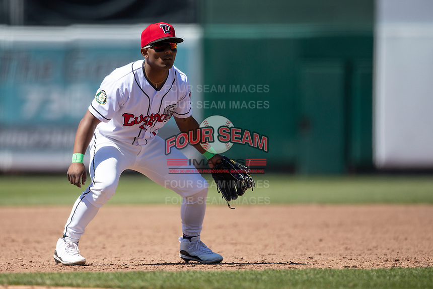 Lansing Lugnuts third baseman Cobie Vance (1) on defense on May 30, 2021 against the Great Lakes Loons at Jackson Field in Lansing, Michigan. (Andrew Woolley/Four Seam Images)