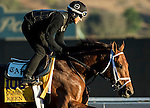 ARCADIA, CA - NOV 02: Keen Ice, owned by Donegal Racing and trained by Todd A. Pletcher, exercises in preparation for the Breeders' Cup Classic at Santa Anita Park on November 2, 2016 in Arcadia, California. (Photo by Douglas DeFelice/Eclipse Sportswire/Breeders Cup)