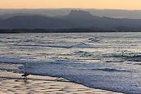 Europe/France/Aquitaine/64/Pyrénées-Atlantiques/Pays-Basque/Biarritz: Surfeurs,  Plage de la Côte des Basques en fond les pyrénées basques espagnoles
