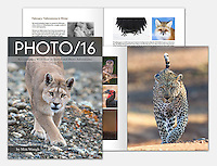 PHOTO/16 is my year in review magazine, recapping a wild year of travel and photography.<br />