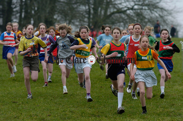 Action from the girls U-11 race at the Clare Cross Country Championships in Kilkishen. Photograph by John Kelly.