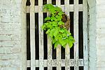 Architectural Details- Gate