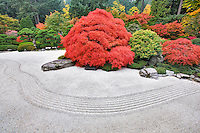 Rock garden with fall color. Portland Japanese Gardens. Oregon