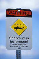 Warning sharks may be present sign posted at Olowalu, Maui. Shark attacks seem to be on the increase in Hawaii.