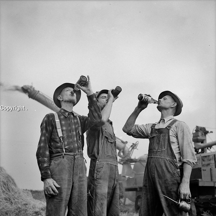 Farmers drinking beer during a hard day's work. Jackson, Michigan, Fall 1941.<br /> <br /> Photo by Arthur S. Siegel