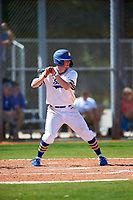 South Dakota State Jackrabbits right fielder Logan Holtz (6) bats during a game against the FIU Panthers on February 23, 2019 at North Charlotte Regional Park in Port Charlotte, Florida.  South Dakota State defeated FIU 4-3.  (Mike Janes/Four Seam Images)