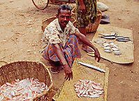 Fish vendor in the market area of the Valicau village town is also called Valicaru Village, Kerala state, India