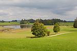 Europa, DEU, Deutschland, Bayern, Allgaeu, Rueckholz, Seenland, Typische Landschaft, Trollweiher, Natur, Umwelt, Landschaft, Jahreszeiten, Stimmungen, Landschaftsfotografie, Landschaften, Landschaftsphoto, Landschaftsphotographie, Tourismus, Touristik, Touristisch, Touristisches, Urlaub, Reisen, Reisen, Ferien, Urlaubsreise, Freizeit, Reise, Reiseziele, Ferienziele, Rueckholz ist eine Gemeinde im schwaebischen Landkreis Ostallgaeu. Rueckholz liegt in der Region Allgaeu im Seenland am Fuß der Allgaeuer Alpen. Der Trollweiher ist ein kleiner Teich in Bayern, Deutschland. Er befindet sich oestlich von Trollen, einem Ortsteil von Rueckholz im Landkreis Ostallgaeu. In Ost-West-Richtung betraegt seine Laenge etwa 680 Meter, in Nord-Sued-Richtung etwa 360 Meter. Es handelt sich um einen Gletscherrandsee.<br /> <br /> [Fuer die Nutzung gelten die jeweils gueltigen Allgemeinen Liefer-und Geschaeftsbedingungen. Nutzung nur gegen Verwendungsmeldung und Nachweis. Download der AGB unter http://www.image-box.com oder werden auf Anfrage zugesendet. Freigabe ist vorher erforderlich. Jede Nutzung des Fotos ist honorarpflichtig gemaess derzeit gueltiger MFM Liste - Kontakt, Uwe Schmid-Fotografie, Duisburg, Tel. (+49).2065.677997, ..archiv@image-box.com, www.image-box.com]