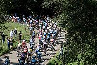peloton up the Slingerberg / Tiendeberg<br /> <br /> 17th Benelux Tour 2021<br /> Stage 5 from Riemst to Bilzen (BEL/192km)<br /> <br /> ©kramon