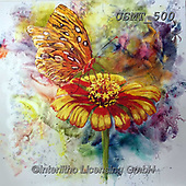 Malenda, FLOWERS, BLUMEN, FLORES, paintings+++++,USMT500,#f#, EVERYDAY