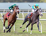 HALLANDALE BEACH, FL - FEB 3:Speed Franco #1 trained by Gustavo Delgado with Jose Ortiz in the irons prepares to pass Gidu along the home stretch and win the $100,000 Dania Beach Stakes (G3) at Gulfstream Park on February 3, 2018 in Hallandale Beach, Florida. (Photo by Bob Aaron/Eclipse Sportswire/Getty Images