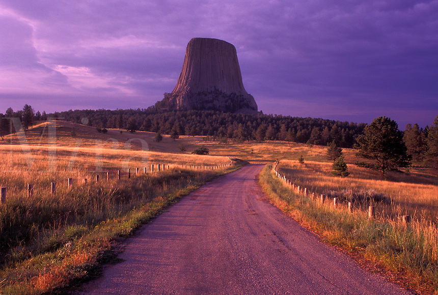 Devils Tower National Monument, sunrise, WY, Wyoming, Park road leads up to Devils Tower at sunrise in Devils Tower Nat'l Monument in Wyoming.