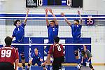 2013 Spring Volleyball: Los Altos High School