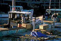AJ2240, lobster boats, Maine, Fishermen working in their lobster boats docked in Wonsqueak Harbor along the Atlantic Ocean.