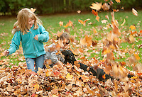 Kids playing in fall leaves with their dog