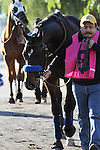 Fed Biz with Mike Smith aboard wins the San Fernando Stakes G2 at Santa Anita Park in Arcadia, California on January 12, 2013.