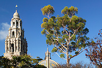 The California Tower and the Museum of Man, Balboa Park, San Diego, California