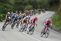 3rd September 2021; Tapia to Monforde de Lemos, Asturias, Spain; stage 19 of Vuelta a Espanya cycling tour;  Ef Education - Nippo