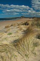 North Berwick Law and Broad Sands near North Berwick, East Lothian