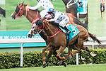 Jockey Brett Prebble riding Contentment competes the Champions Mile (1600m) on 07 May 2017, at the Sha Tin Racecourse  in Hong Kong, China. Photo by Chris Wong / Power Sport Images