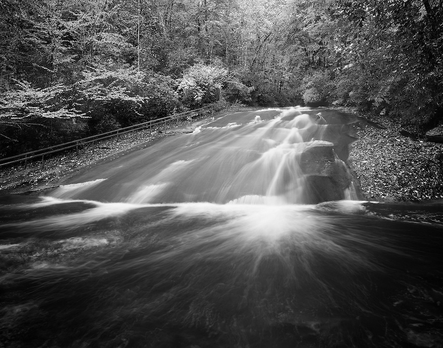 """""""Sliding Rock""""<br /> Pisgah National Forest <br /> Brevard, North Carolina<br />  2014<br /> <br /> Sliding Rock is tucked in among the natural hardwoods of western North Carolina.   Located near Brevard, North Carolina, in the Pisgah National Forest, Sliding Rock is a 60' natural rock slide with a 6-7 foot deep pool at the base. During the heat of summer, long lines of people wait for their turns to slide down the smooth rock into the chilly pool.  <br /> <br /> <br /> 4 x 5 Large Format Film"""