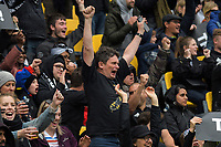 Fans celebrate during the Bledisloe Cup rugby union match between the New Zealand All Blacks and Australia Wallabies at Sky Stadium in Wellington, New Zealand on Saturday, 27 July 2019. Photo: Mike Moran / lintottphoto.co.nz