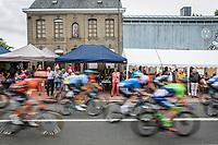 peloton.<br /> <br /> 71th Halle Ingooigem 2018 (1.1)<br /> 1 Day Race: Halle > Ingooigem (197.7km)