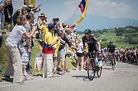 Sebastian Henao (COL/SKY) up the crazy steep Muro di Ca' del Poggio (max 18%)<br /> <br /> Stage 20: Pordenone › Asiago (190km)<br /> 100th Giro d'Italia 2017