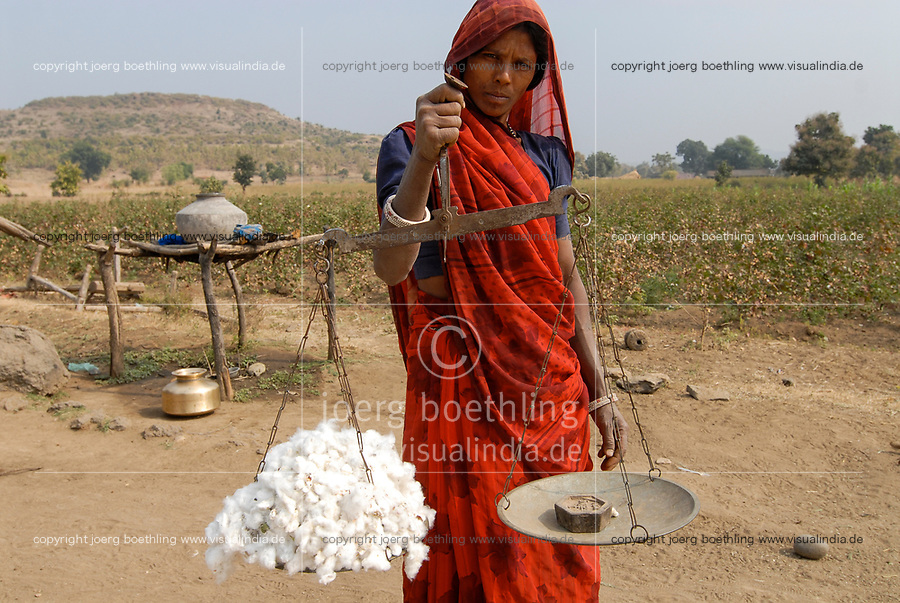 INDIA Madhya Pradesh , cotton farming in Kasrawad , tribal woman weigh cotton harvest / INDIEN Madhya Pradesh , Baumwollanbau, Adivasi Frau mit Waage