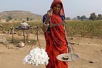 INDIA Madhya Pradesh , cotton farming in Kasrawad , tribal woman weigh cotton harvest / INDIEN Madhya Pradesh , Baumwollanbau, Adivasi Frau mit Waage