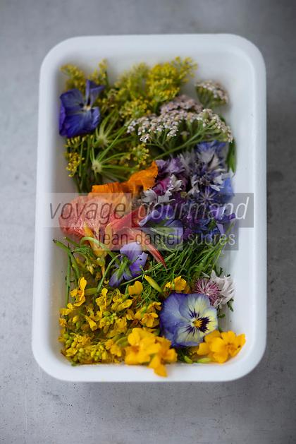 Gastronomie générale / Diététique /  Cuisine Florale Bio // General gastronomy / Diet / Organic floral cuisine